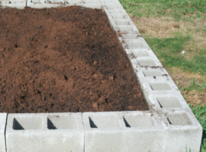 Example of a cinder block raised garden bed